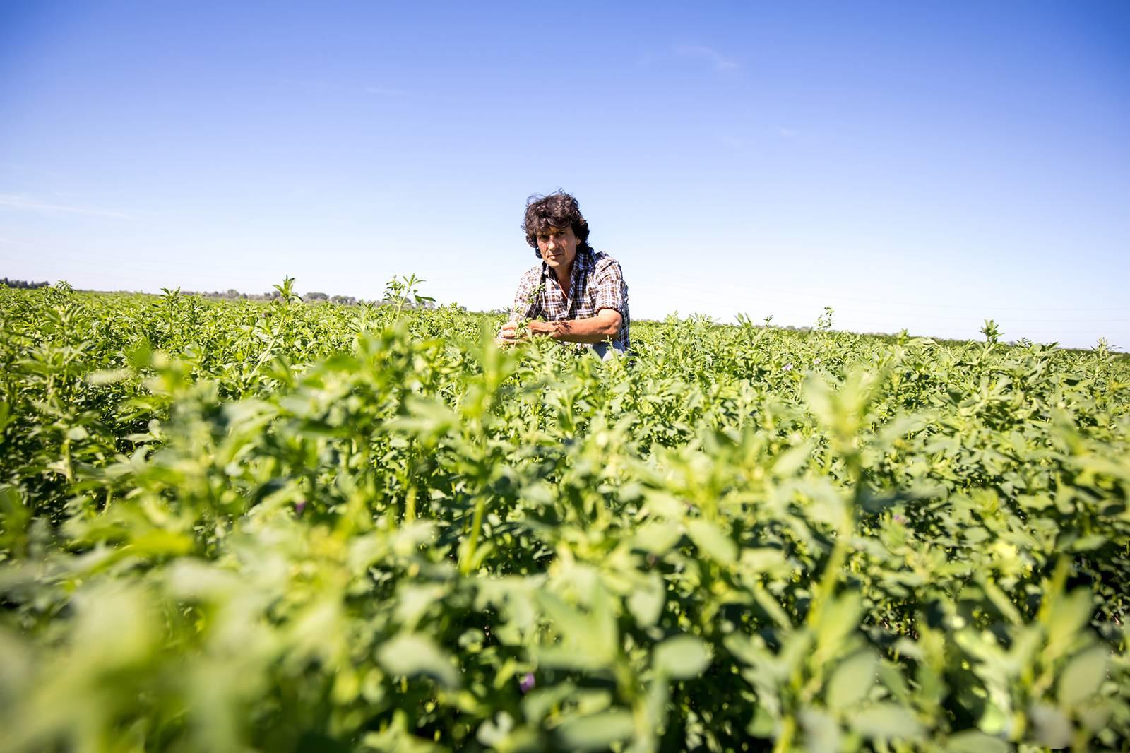 Storia, filosofia e valori di Open Farm