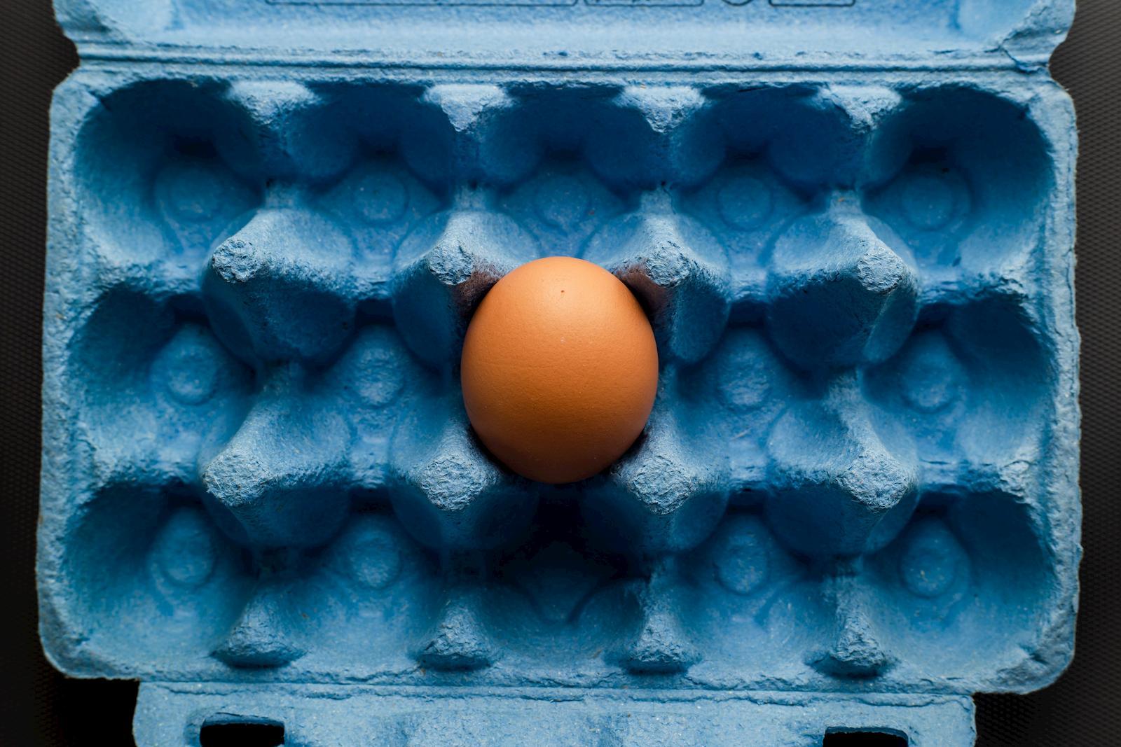 notizie dal mondo del settore primario sulle uova